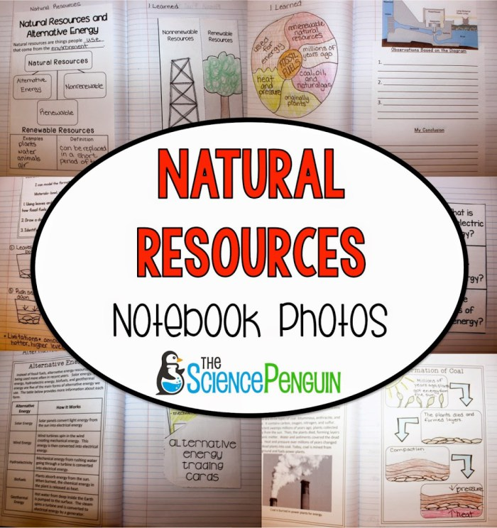 Natural Resources Quiz Rd Grade