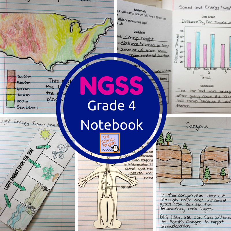 4th grade ngss interactive science notebook the science penguin. Black Bedroom Furniture Sets. Home Design Ideas