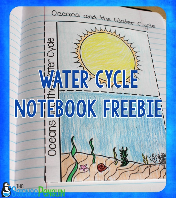 Ideas for Teaching the Water Cycle — The Science Penguin