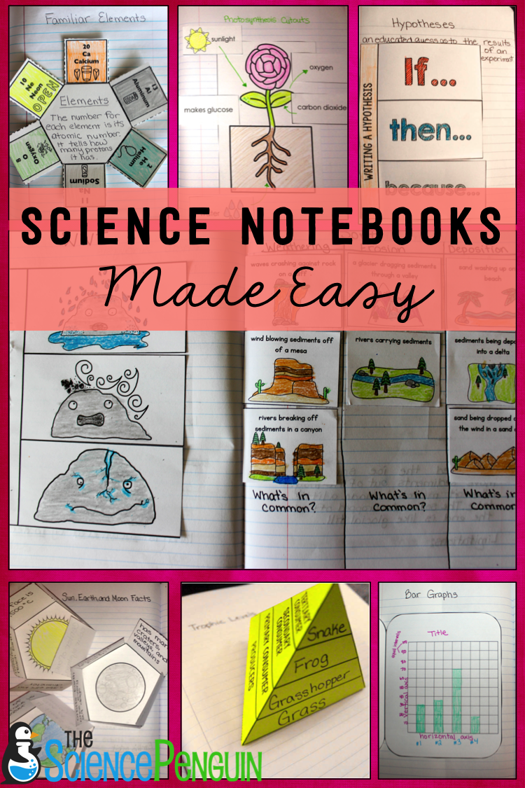 All in One Science Notebook