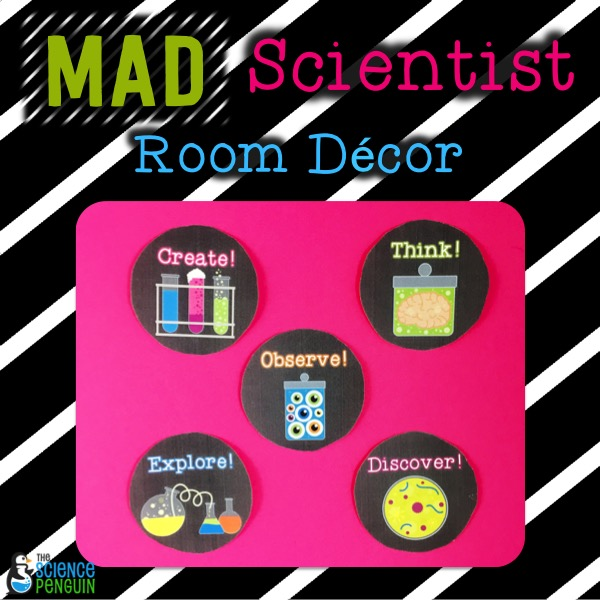 Science Classroom Design Ideas: Science Classroom Decorations