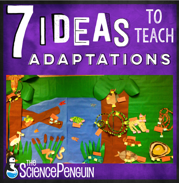 7 Ideas To Teach Animal Adaptations The Science Penguin