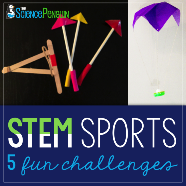 Stem Sports End Of The Year Fun