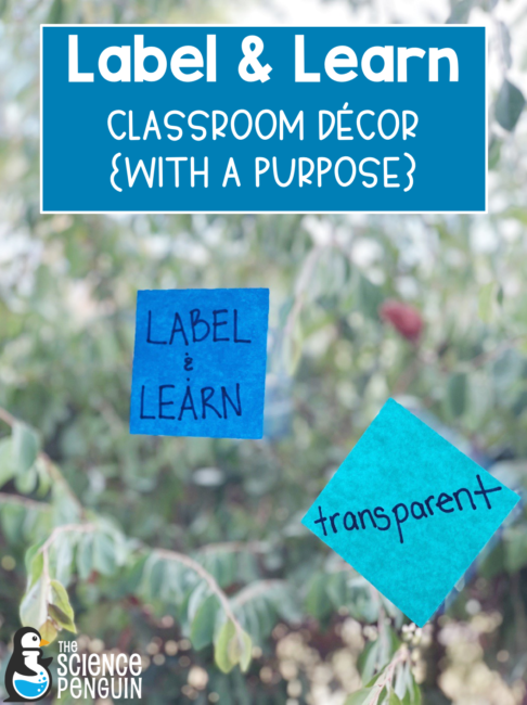 Label and Learn: Science Classroom Decor with a purpose